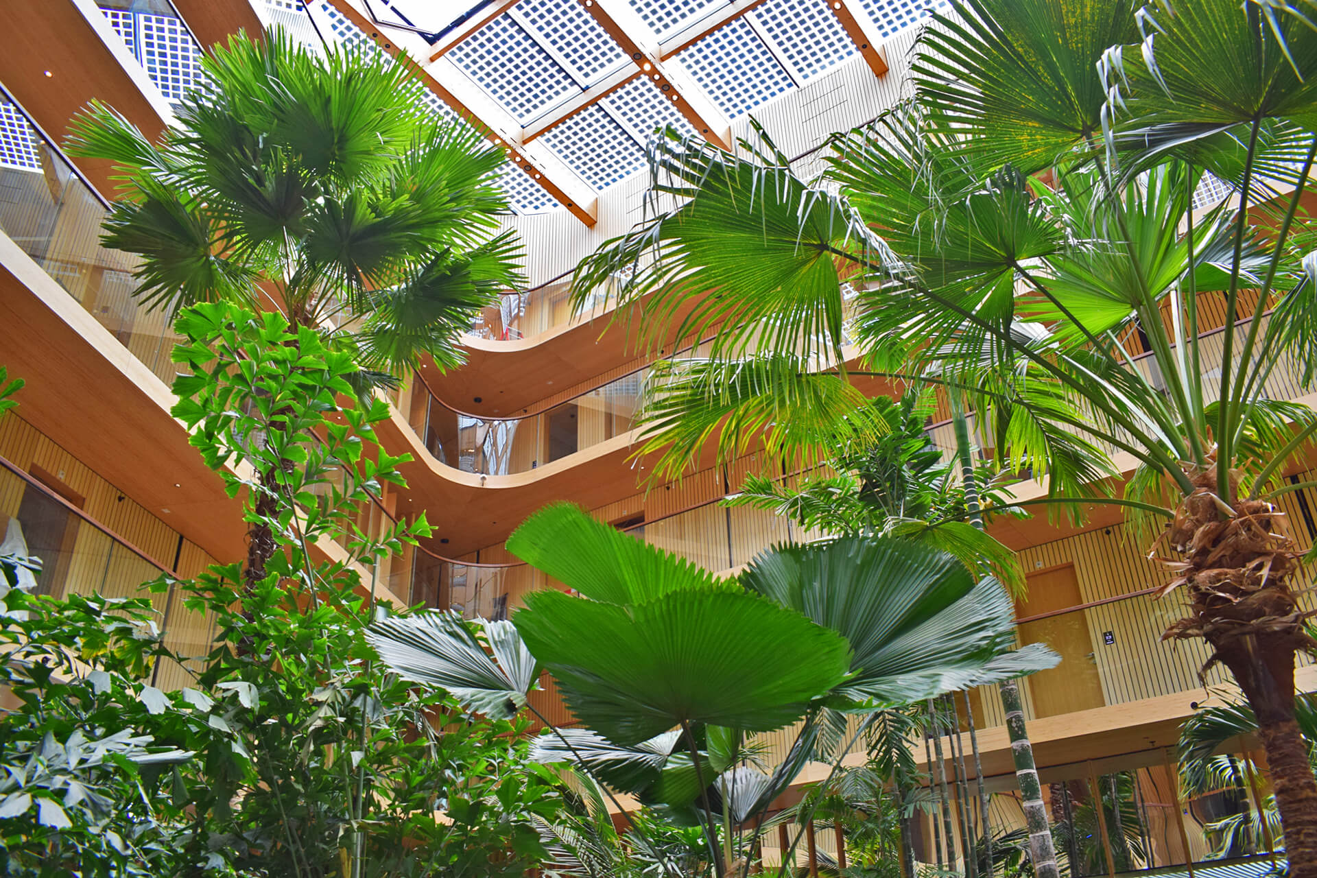 Frame In Amsterdam A Java Island Hotel Goes Greener